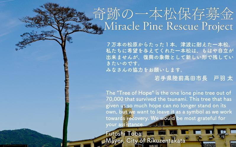 岩手県陸前高田市のフェイスブックページ「奇跡の一本松保存募金」ページへのリンク